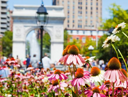 Spring - Summer in New York Hotel