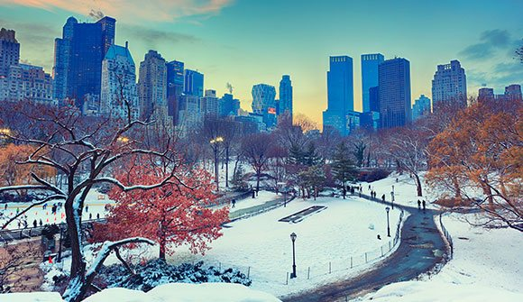 Autumn - Winter at New York Hotel