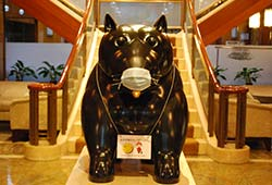 The Kitano Hotel New York Dog with Mask